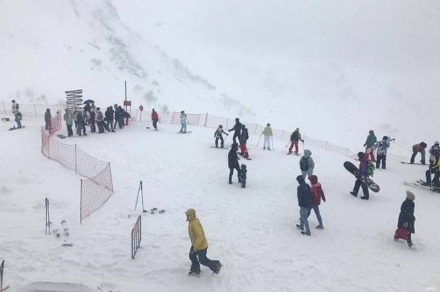 На трассах в Красной Поляне очень много тех, кто впервые встал на доску или лыжи.