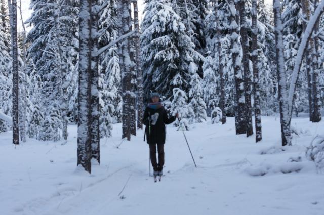 Лыжи можно взять и напрокат.
