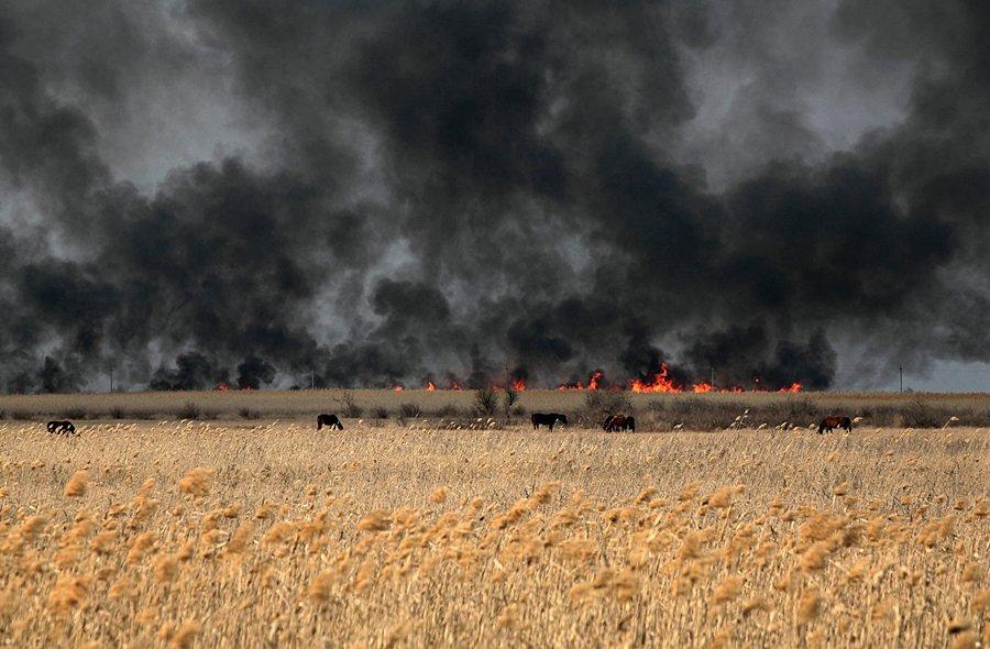 Борьба с огненной стихией попала на фото Игоря Подгорного