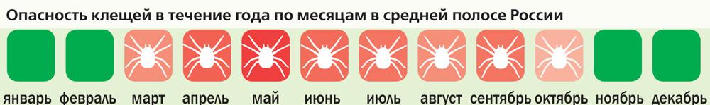 Чем ярче красный цвет, тем выше активность клещей. Зелёный цвет– клещей нет.