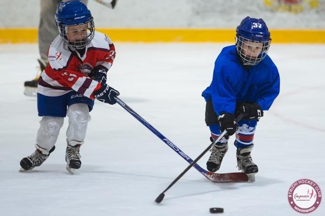 Юные спортсмены хоккейного клуба «Стрижи»