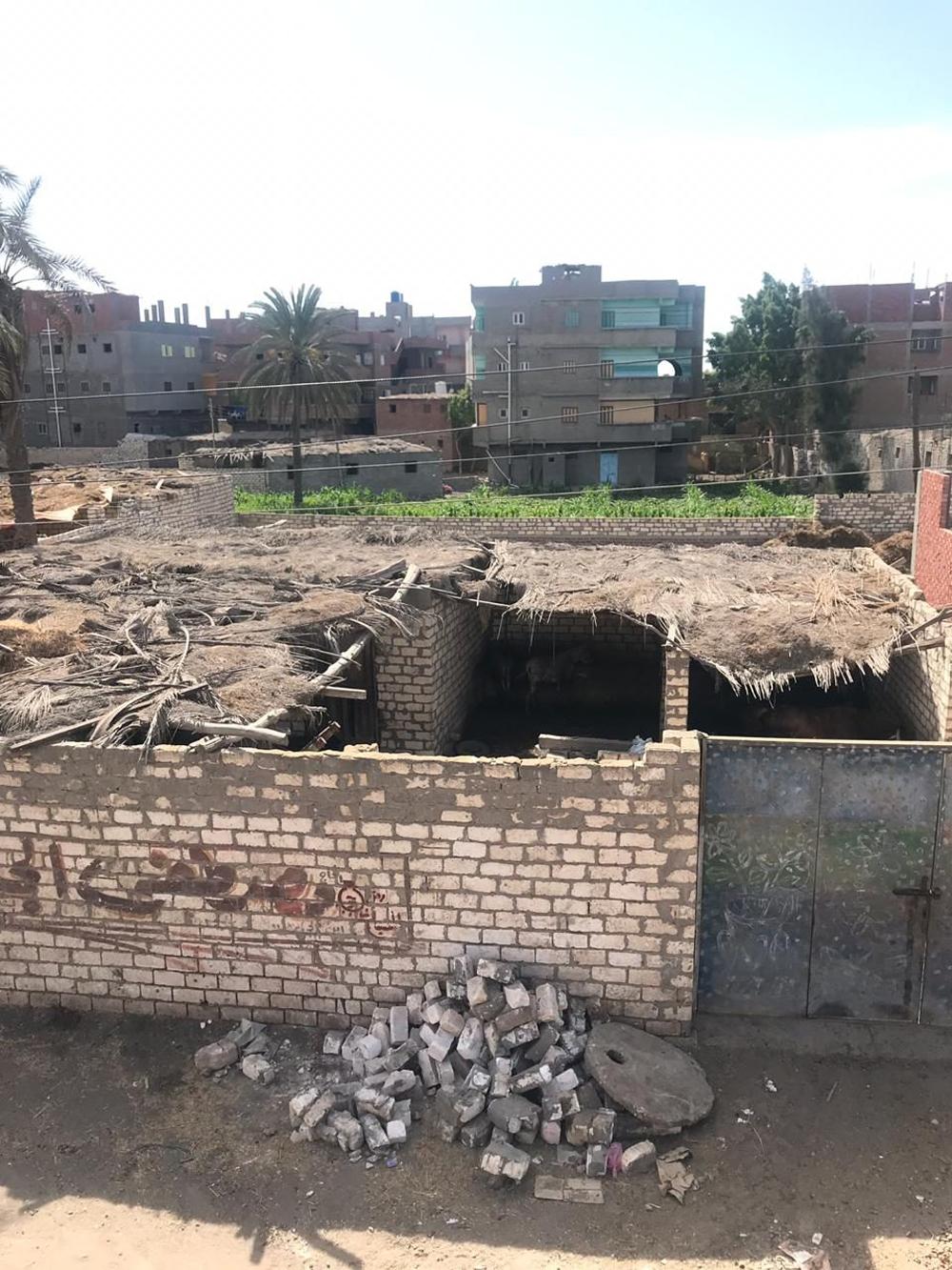 В таких условиях держали в египетской деревне Полину Кушнереву.