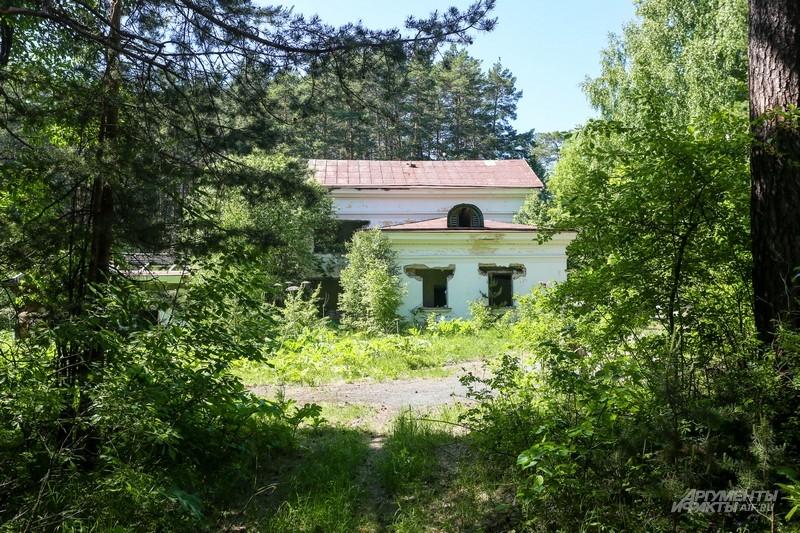 Вокруг здания до сих пор глухой лес