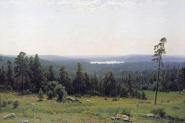 Лесные дали,1884 г