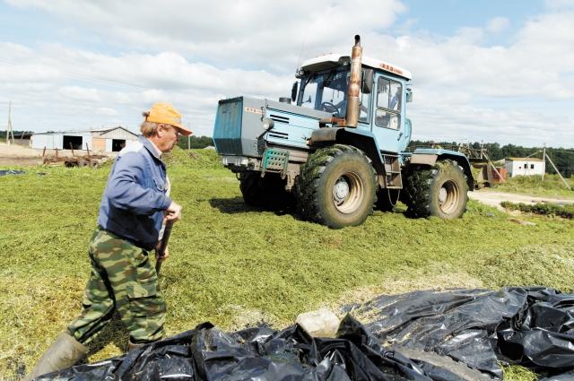Сельхозпредприятия в Пермском крае могут получить господдержку.