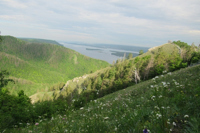 Стрельная гора летом