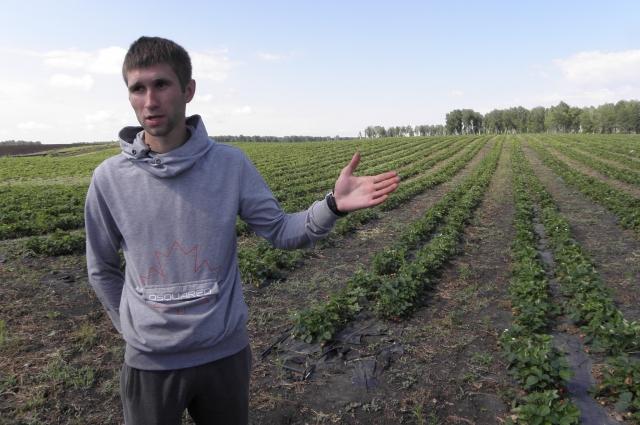 агроном НПО Алексей ГРЕКОВ