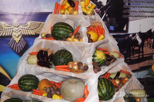 Сельхоз ярмарка в Самаре