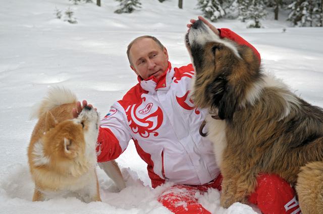 Подмосковье, 2013 г.