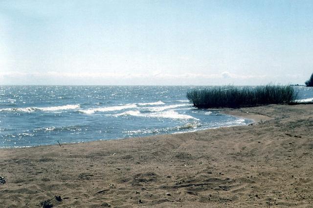 Озеро Ханка.