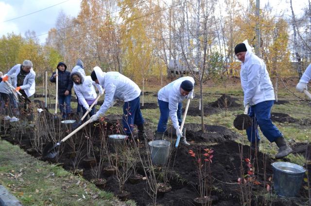 Сотрудники компании вносят вклад в экологию региона.