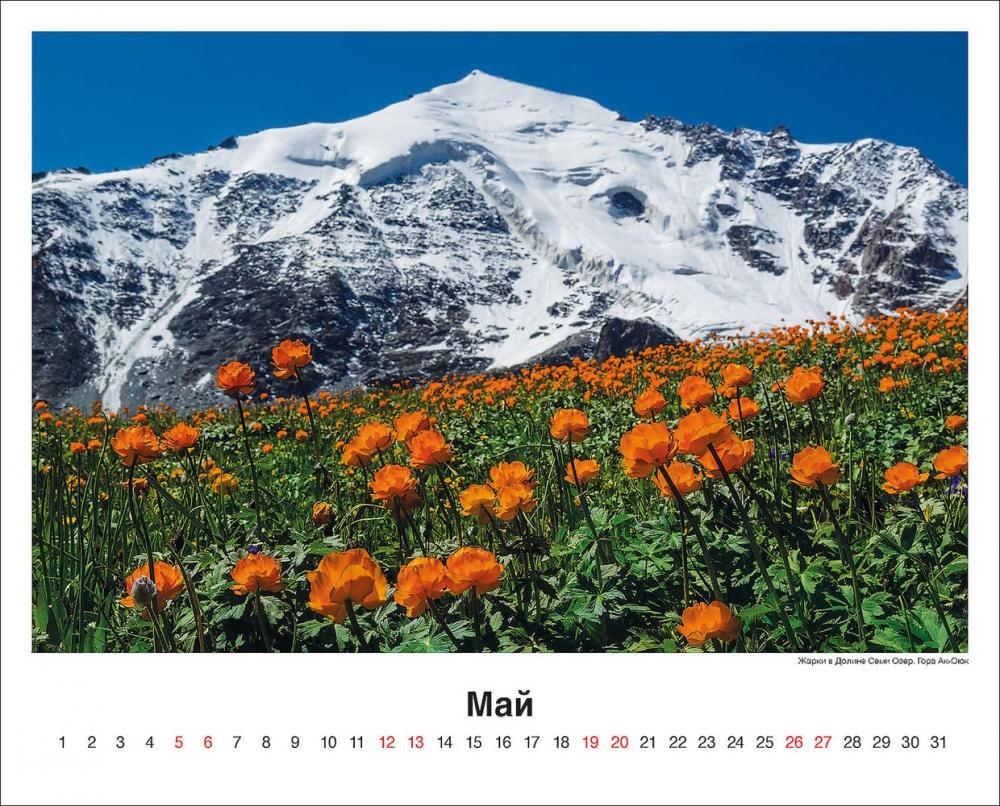 Страница календаря.