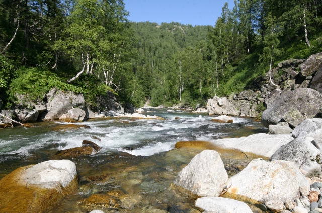 Река Верхняя Терсь.