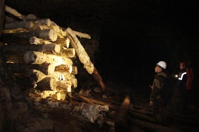 В Сокских штольнях деревянные конструкции покрываются плесенью.