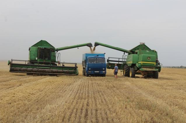 Зерновое производство - стержень экономики округа.