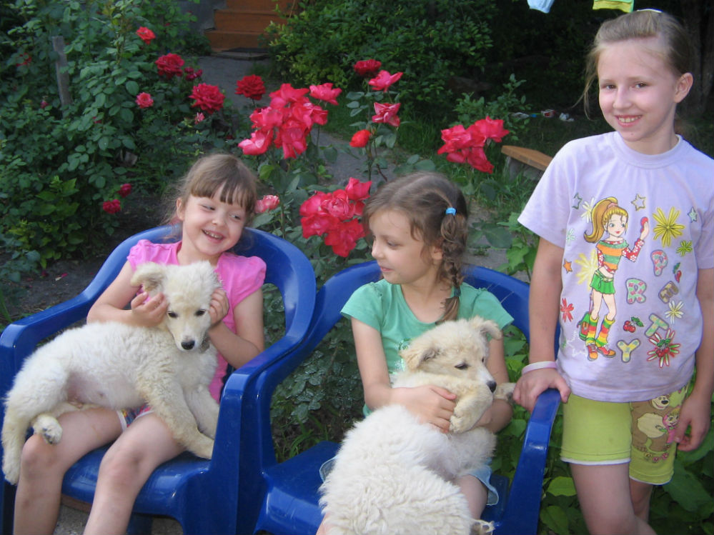 Хорошо на летних каникулах у бабушки с Малышом и Малышкой!