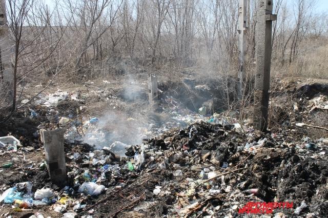 Проблема со сбором и вывозом  мусора стоит особенно остро из-за халатного отношения к отходам как со  стороны жителей, так и со стороны местных властей.