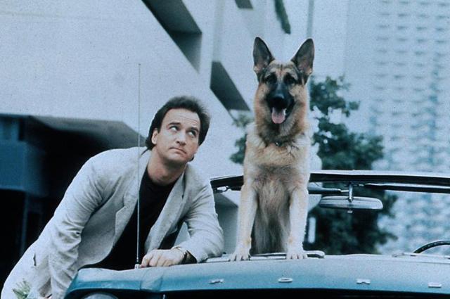 «К-9: Собачья работа», 1989.