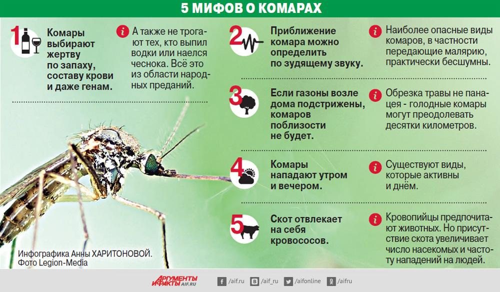 Комары. Инфографика