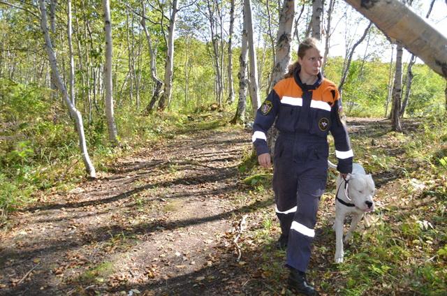 Спасатели, МЧС, поиск в лесу, кинолог