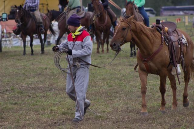 Конь - это напарник и друг.