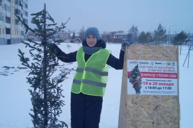 Оставлять елки можно рядом с банерами, даже если рядом нет волонтера