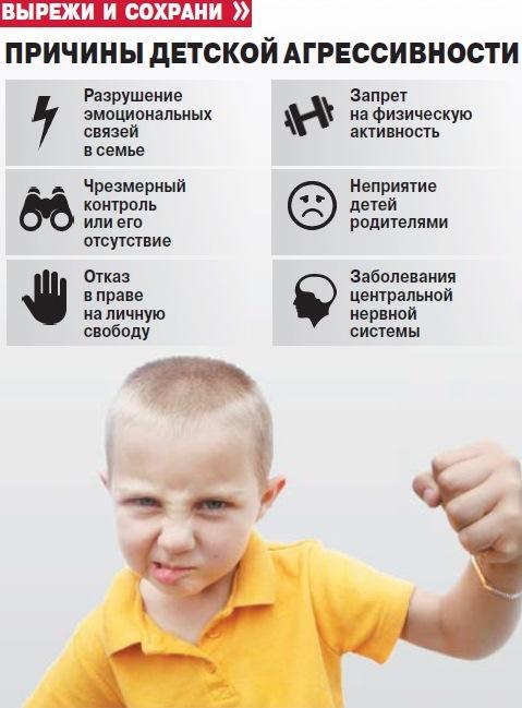 Агрессия, инфографика.