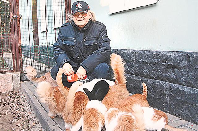 У Антонова живут дома десятки кошек и собак. Даже сам хозяин не знает точное их количество.