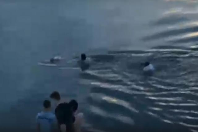 К спасателю с берега кинулись на помощь ещё два человека.
