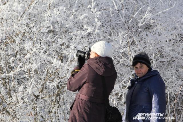 Зима в лесах Ростовской области привлекает своим величием и красотой!