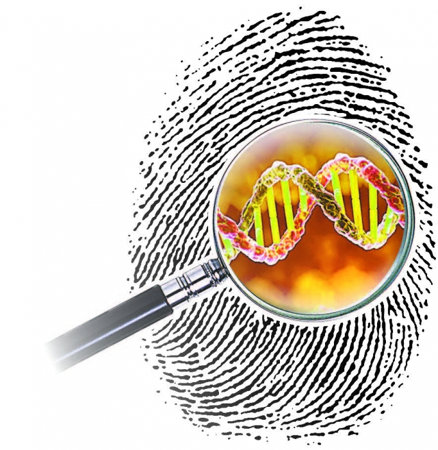 Сегодня исследуют как отпечатки пальцев, так и геномные следы на месте преступления.