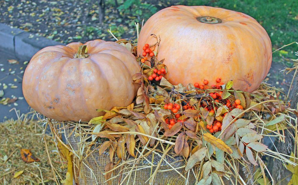 Хэллоуин и праздник «Тыква-Party»