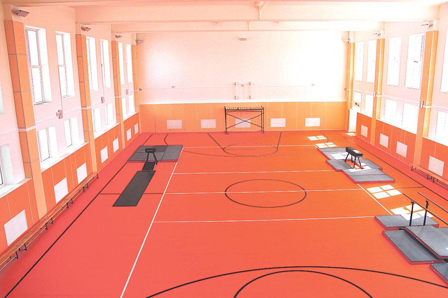 В школе оборудованы один тренажёрный, два спортивных и три снарядных зала, а также стадион с беговыми дорожками профессионального уровня.