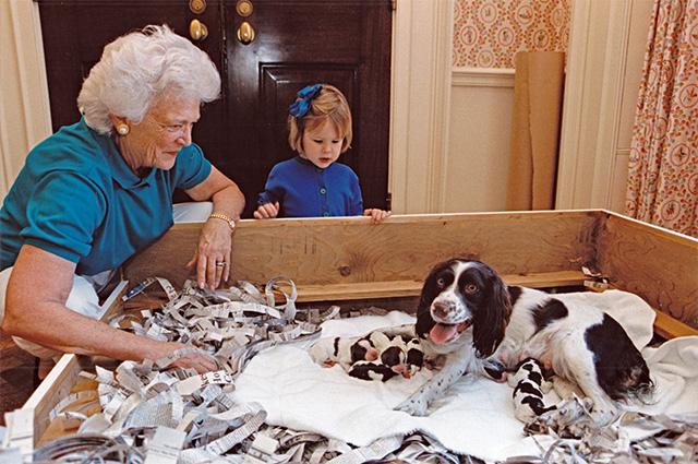 Барбара Буш с внучкой и собаками в Белом доме. 1989 г.