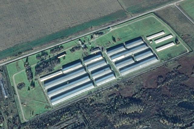 Хранилище занимает порядка 20 гектаров