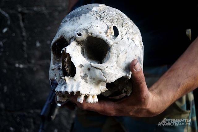 Череп, найденный в районе Хальдия в Хомсе