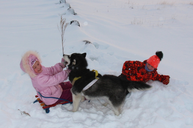 Конкурсная фотография Ксении и Маргариты.