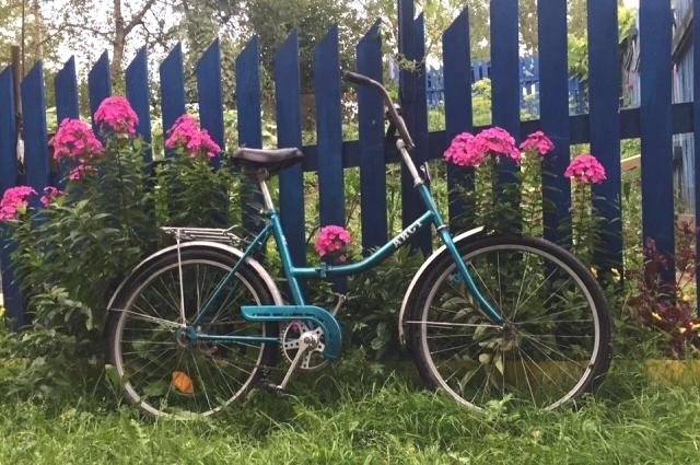 Летом кататься на велосипеде - одно удовольствие