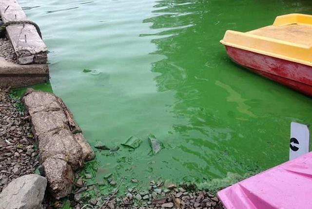 Халактырское озеро