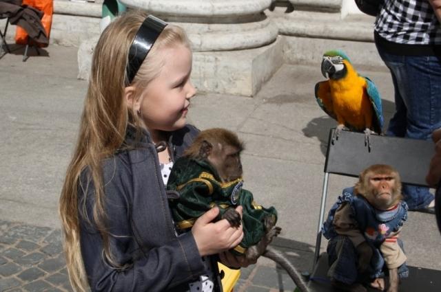 Фотографироваться с животными опасно, особенно детям - говорят врачи.