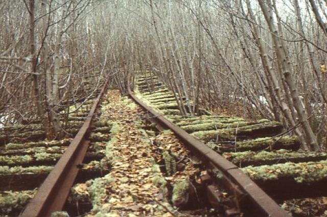 Тысячи людей умерли, пока строили эту железную дорогу. Вот все, что осталось от их труда.