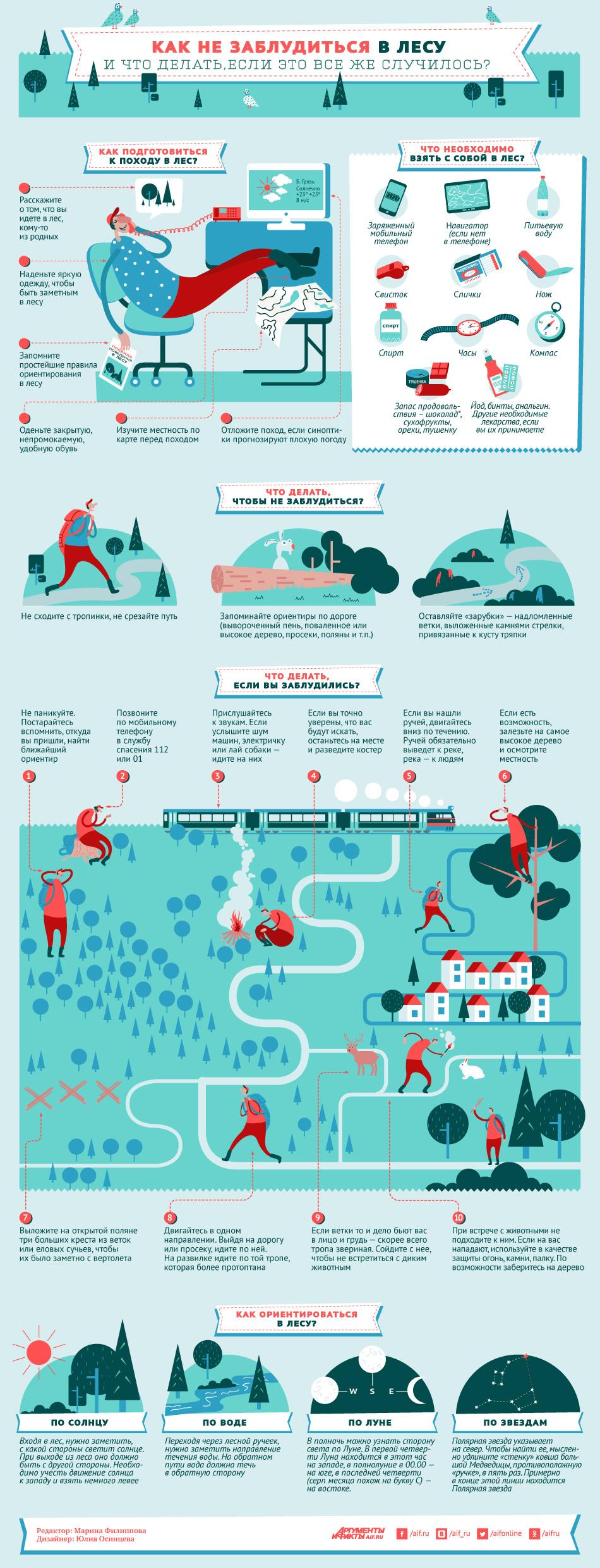 Как не заблудиться в лесу? Инфографика