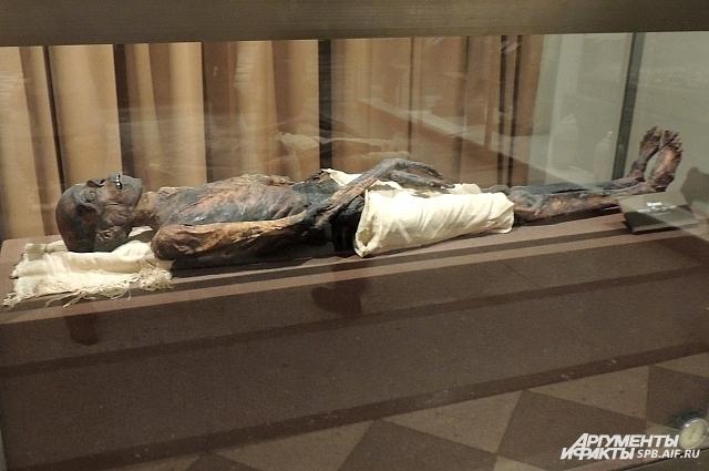 Мумии, которая выставлена в Египетском зале, больше 3 тысяч лет.