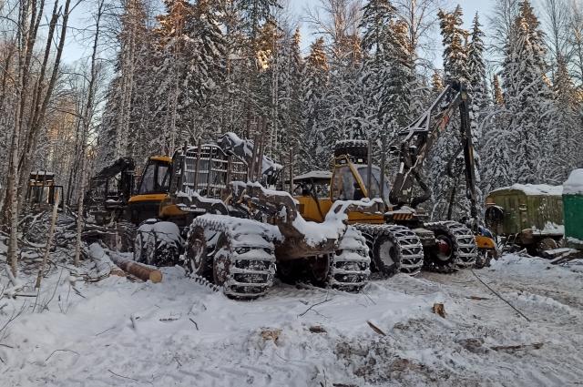 Здесь работают люди со всей Сибири.