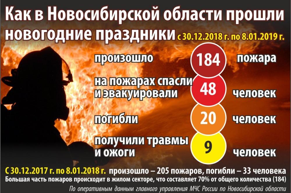 Итоги новогодних каникул подвели в ГУ МЧС по НСО.