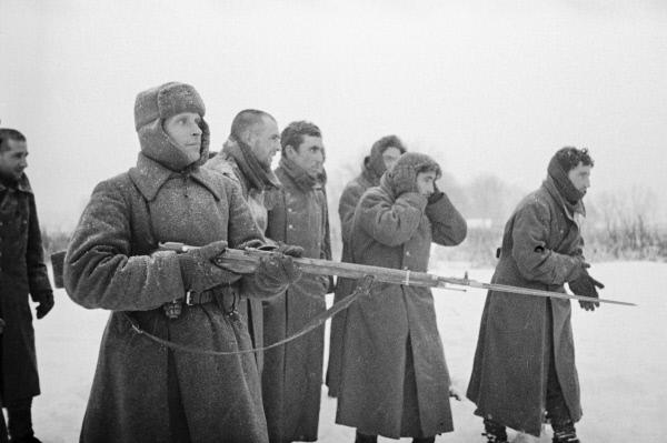 Красноармеец ведёт пленных испанской Голубой дивизии . 1941 год