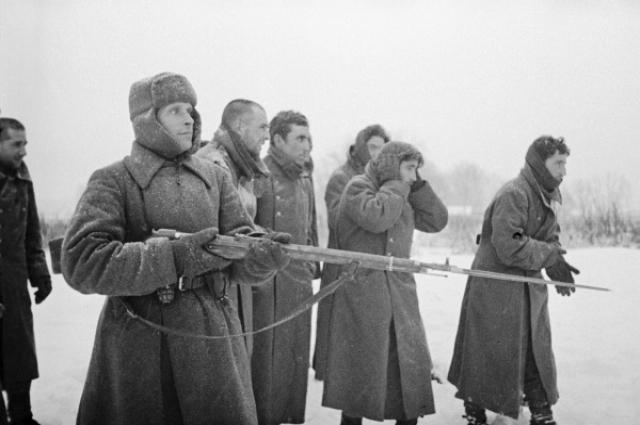 Красноармеец ведет пленных испанской «Голубой дивизии». 1941 год.