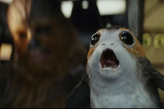 Порги. «Звёздные войны: Последние джедаи»
