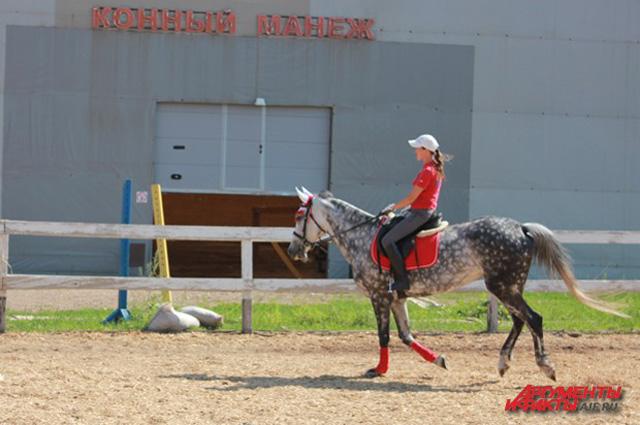 В паре всадника и лошади главный все же человек