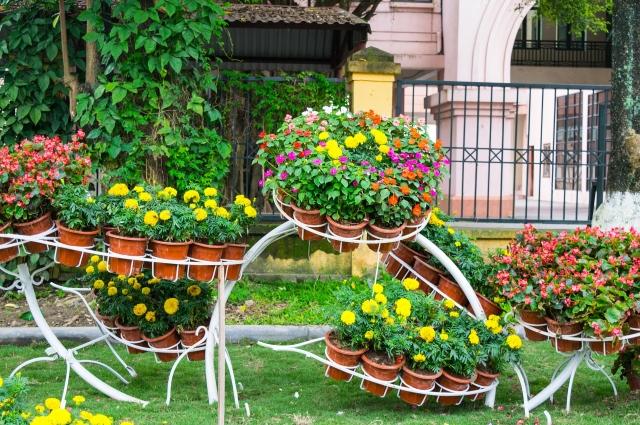 Разноуровневые конструкции для цветов.